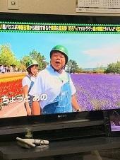 武蔵の面白写真(笑) - わんわん・パラダイス