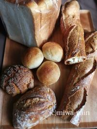 最高のデイリーパンがよカっタネ~ - パンある日記(仮)@この世にパンがある限り。
