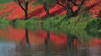 津屋川堤防 - 瞳の記憶