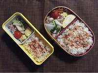 かぶと豚肉の炒め物 - 庶民のショボい弁当