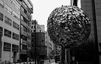御堂筋 本町界隈 - tonbeiのはいかい写真日記