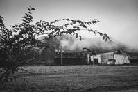 令和の秋を迎える廃工場 - Film&Gasoline