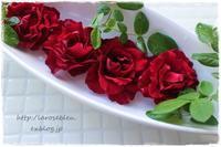 夏の残りの薔薇'バルバラ' - La rose 薔薇の庭