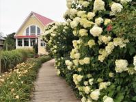 プリンス・エドワード島ツアー(44)プリンスエドワードアイランド・プリザーブ・カンパニーの「希望の庭」 - たんぶーらんの戯言