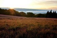 赤そばの里の夜明けと彼岸花 - 峰さんの山あるき