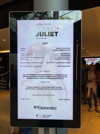 Romeo + Juliet - 雑雑日記(a)