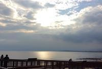新 江ノ島水族館は癒しスポット    横浜ステイ   2019.9 - Hawaiian LomiLomi サロン  華(レフア)邸