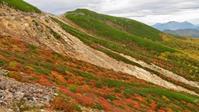 今年の乗鞍岳の紅葉は大当たりです!! - 乗鞍高原カフェ&バー スプリングバンクの日記②