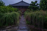 常林寺の萩 - 鏡花水月