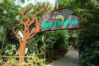 August 2019 Singapore Zoo 10 -REPTOPIA- - 墨色の鳥籠