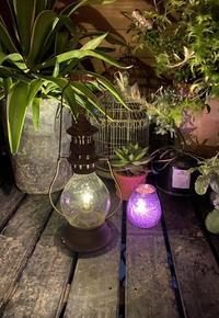 灯りを楽しむ♪ - 小さな庭 2