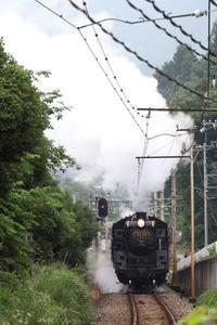 白煙の季節- 2019年・秩父鉄道 - - ねこの撮った汽車