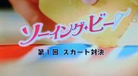 『ソーイング・ビー』見たど~~オモロかったど~~ - 新生・gogoワテは行く!