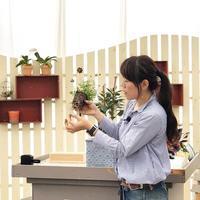 10月のHanaプラ - さにべるスタッフblog     -Sunny Day's Garden-