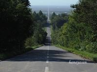 天に続く道・峠・鮭の川 - こもれびの森