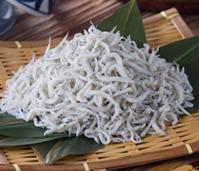 アメリカ人はシラスを食べれない - 佐藤勇太のブログ