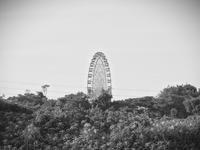 F1日本グランプリ - モノクロ写真をアップする!