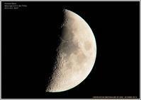 弓張月と木星 - 野鳥の素顔 <野鳥と日々の出来事>