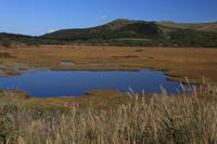 八島湿原草紅葉① - 風の彩り-2
