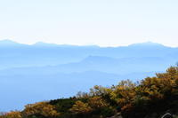 木曽駒ケ岳でテント泊 - 雷鳥さんに恋をして