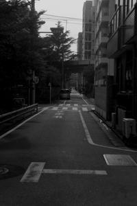 夕暮の道 - 散歩と写真
