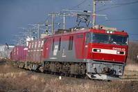 新しいカメラで貨物列車を撮る。 - 新・光あるうちに行け!
