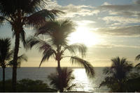 Hawaii - ポジティブに行こう!婚活アドバ日々成長中