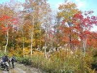 いこうよう!紅葉狩り温泉キャンプツーリング19 - 風魔プラス1世田谷店blog