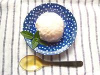 甘酒とヨーグルトで、ヘルシーなアイスクリーム - Minha Praia