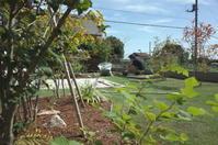 秋の庭しごと - 普  段  着
