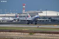 ポイントは梅の花A340チャイナエアライン(CI) - 飛行機の虜