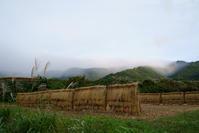 野沢温泉村新米の季節です。おそばもね♪ - 野沢温泉とその周辺いろいろ2