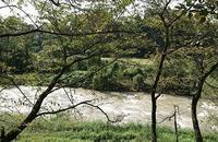 きたなく濁っています - 金沢犀川温泉 川端の湯宿「滝亭」BLOG