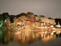 【11/24、28、30、12/1】六義園紅葉ライトアップ&都内紅葉スポットぐるっと6景めぐりバスツアー - 日帰りツアー・社会見学・東京観光・体験イベン
