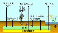 ⑩ 19.2 温室効果ガスの発生抑制及び省エネルギーの努力 - すてきな農業のスタイル
