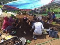 コーヒー育苗による森林保全事業2018-2019報告③受益者と担当した森林官の感想 - Cordillera Green Network ブログ
