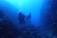 19.10.8宜野湾・2大エリアを - 沖縄本島 島んちゅガイドの『ダイビング日誌』