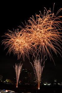 多摩川の花火…④ - Taro's Photo