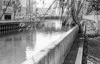 10月の河畔(その3) - そぞろ歩きの記憶
