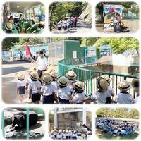 年少組遠足10月7日(月) - ひのくま幼稚園のブログ