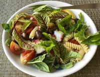 蛸とトマトとオリーブのパスタサラダ - やせっぽちソプラノのキッチン2