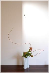 今日の花とコーディネート - Less is more