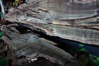 神代桜丸太製材 - SOLiD「無垢材セレクトカタログ」/ 材木店・製材所 新発田屋(シバタヤ)