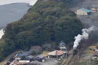 こんもりした濃い緑の森とふわもこに膨らんだ白煙- 2018年・大井川鉄道 - - ねこの撮った汽車