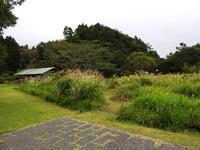 台風に備えて - 千葉県いすみ環境と文化のさとセンター