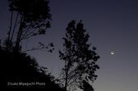 細い月が昇る朝 - ekkoの --- four seasons --- 北海道