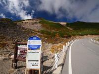 乗鞍岳のオコジョ - tokoya3@