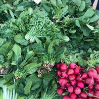 秋の農民市場はビタミンカラー✨ - 幸せなシチリアの食卓、時々にゃんこ