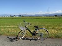 自転車日和・秋 - タビノイロドリ