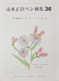 #自然画 『ペン画集』 36 - スケッチ感察ノート (Nature journal)
